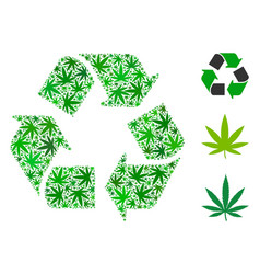 Recycle arrows mosaic of cannabis vector