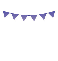 string flag garland or bunting decoration flat vector image