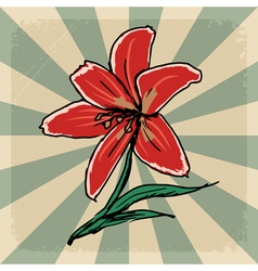 Vintage grunge background with lily vector