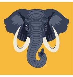 elephante vector image vector image
