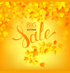Autumn sale poster with vector
