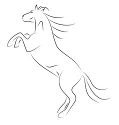 Black line horse on hind legs on white background vector