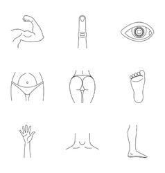 Human body icons set outline style vector image