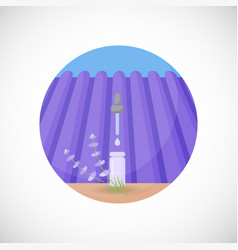 Lavender essential oil flat icon vector