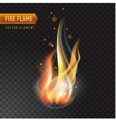 Realistic burning fire flame effect with vector