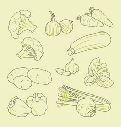set hand-drawn vegetables organic healthy vector image