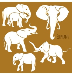 Set of African elephants in various poses vector