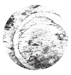 Wooden circle vector