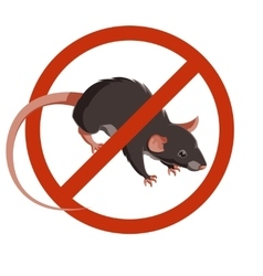 Rat forbidden sign icon vector image