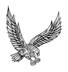 eagle on white background design element for vector image