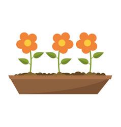 Flowers in ground cartoon vector