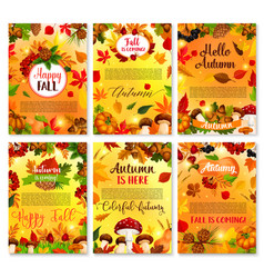 hello autumn seasonal greeting cards vector image