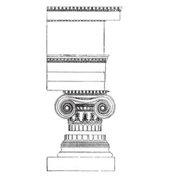 Ionic order theorist vintage engraving vector