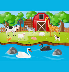 Many animals on farmyard vector