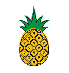 pineapple icon tropical fruit vector image