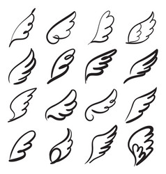 Sketch angel wings angel feather wing bird vector
