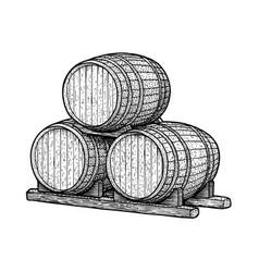 barrel drawing engraving ink line vector image