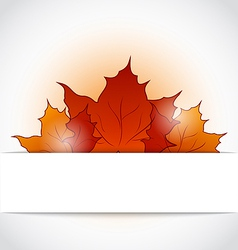 Autumnal maple leaves sticking out of the cut vector image vector image