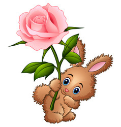cute little rabbit cartoon holding a flower vector image