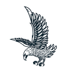 Eagle on white background design element or vector