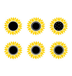 hand drawn yellow sunflowers set of icons vector image