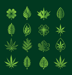 leaf icons on dark background vector image