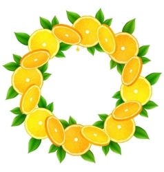 Orange slices with leaves round frame vector