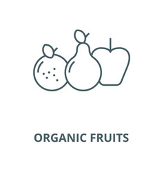 organic fruits line icon linear concept vector image