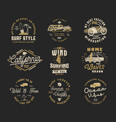 vintage surfing graphics set and emblems for web vector image