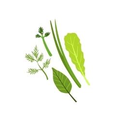 Herbs product rich in folic acid vector