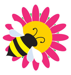 bumble bee on flower vector image