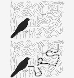 Blackbird maze vector