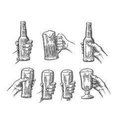 man and woman hands holding clinking with beer vector image