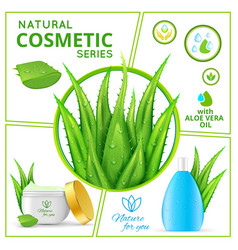 Realistic natural cosmetic products composition vector