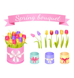 spring bouquet set of flowers vector image