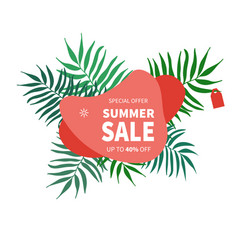summer sale banner template vector image