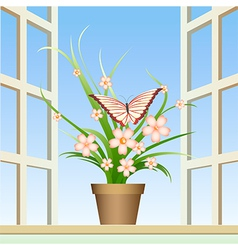 butterfly and window plant vector image