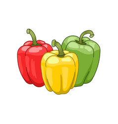 Paprika colored botanical vector