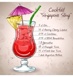 The Singapore Sling cocktail vector image