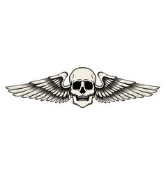 winged skull in tattoo style isolated on white vector image