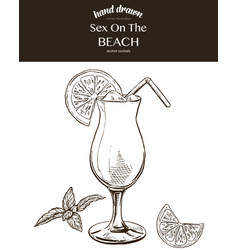 sex on the beach sketch vector image vector image