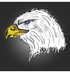 Colored Eagle vector image
