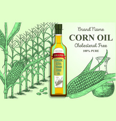corn oil brand ads poster banner template vector image