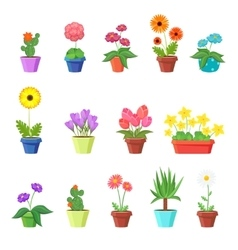 Cute spring flowers in pots vector image