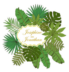 Floral frame collection with tropical leafs in vector