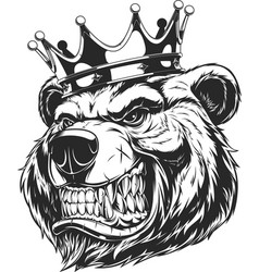 head a ferocious bear vector image