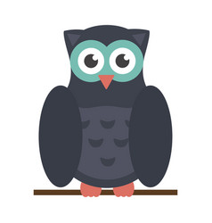 owl bird cartoon vector image