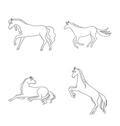 Stallion and galloping vector