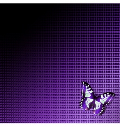 tech background with butterfly vector image