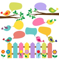Colorful birds with bubbles for speech vector image vector image